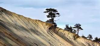 10 main causes of soil erosion info