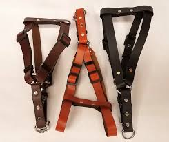 leather dog harness plain 0 75 inch wide dhp5002 2
