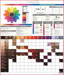 Paul Mitchell Color Wheel Chart