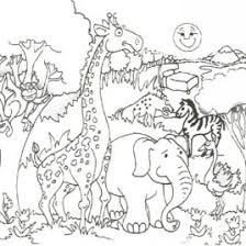 Small Picture Coloring Pages Safari Animals Archives Mente Beta Most Complete