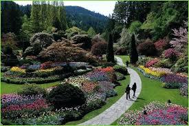 flower gardens pictures. Flowers Garden Near Me Photo 3 Of 6 Great Botanical Flower Gardens Pictures