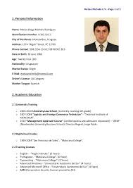 cv in english examples cv examples cv english example resume cv english ou can download my english resume example