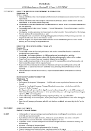 Director Resume Sample Business Operations Director Resume Samples Velvet Jobs 10