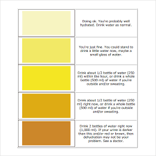 Urine Hydration Chart Australia Free 7 Sample Urine Color Chart Templates In Pdf