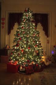 Christmas Tree In Home  Christmas Lights DecorationAt Home Christmas Tree