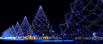 holiday lights wallpaper iphone. Modren Lights Holiday Lights On Wallpaper Iphone O