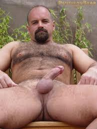 Hairy bear free videos