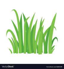 Grass cartoon texture field shape Royalty Free Vector Image