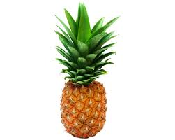 pineapple transparent background. transparent pineapple png background mart