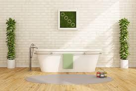 Zimmerpflanzen Für Das Wellness Badezimmer 7 Tipps Für Die Auswahl