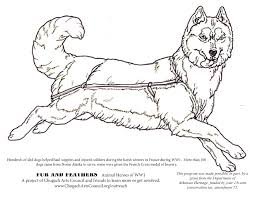 Small Picture Coloring Pages Fur and Feathers Chugach Arts Council