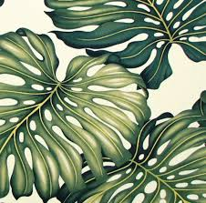 monstera upholstery fabric furniture fabric hawaii curtains tapestry fabric cushion covers cotton twill by the yard