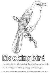 Small Picture Mockingbird coloring page