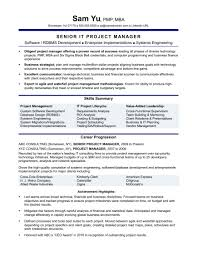 It Manager Resume Resumes Executive Template Word Project Skills