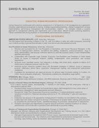 Sales Executive Resume Template Free Resume Resume