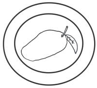 Glutenvrije Kinderen Salade Van Andijvie Mango En Kip