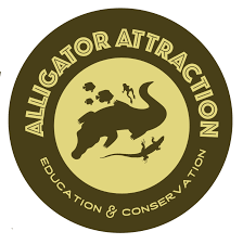 Kiss A Gator – Alligator Attractions