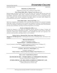 Sample Security Consultant Resume Beautiful Security Consultant Resume Sample Gallery Example Resume 19