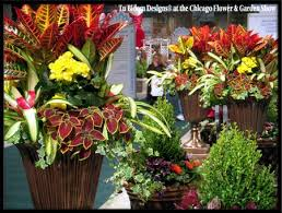 Small Picture 11 best Container Gardening Ideas For Flowers images on Pinterest