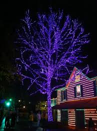 Dollywood Christmas Lights 2019 Dollywood Christmas Lights Tennessee 2011 I Love This
