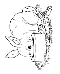 Small Picture Easter Bunny Coloring page Pet Bunny