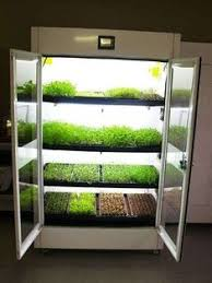 indoor hydroponic gardening. Hydroponic Kitchen Garden - Unlike The Hyundai Nano Garden, You Can Buy Urban Cultivator? (It Also Comes In A Residential Model) Click Link Indoor Gardening