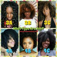 Black Natural Hair Types Chart Pin By Letoria Bennett On Hair In 2019 Natural Hair Types