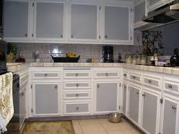 Excellent Oak Cabinets Blue Backsplash Best Gorgeous White Brown