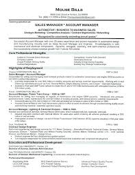 Resume Sample Doc Best Resume Sample For Sales Head Feat Sales Director Resume Sales Resume