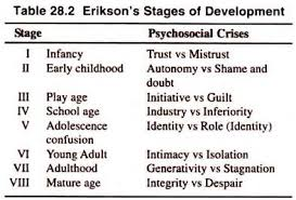 essay on adolescence top essays psychology erikson s stages of development