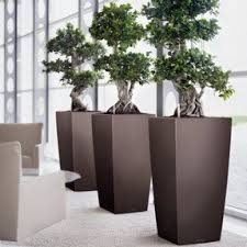 office planter boxes. office planters u0026 modern indoor planter boxes