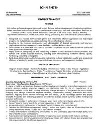 Program Manager Resume Stunning Pin By Carmen Sanchez On Information Technology Resumes Pinterest