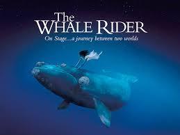 professor hs whale rider summary