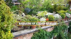 benefits of a roof garden advantages