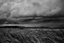 Tempête obscure - Maurice Rollinat Images?q=tbn:ANd9GcSUXqDFJtmIBJzQXMRJSjhQPFse0VmVC2CSLw&usqp=CAU