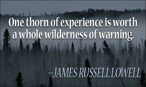 Experience Quotes Stunning Experience Quotes