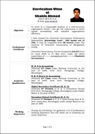 What Is A Resume Template Gorgeous Template What Is A Cv Resume Examples Templates Psd Free Sample