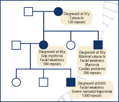 Muscular Dystrophy Pedigree Chart Answers Non Mendelian Inheritance Lesson 1 Triplet Repeat Disorders