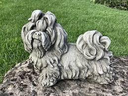 stone garden shih tzu dog puppy