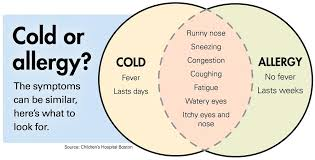 Cold Vs Allergy Symptoms Chart Flavors Of Spring Misery How Allergies Differ From Colds