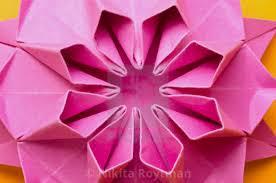 Paper Folded Flower Pink Paper Origami Flower License Download Or Print For