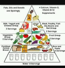 Prepare A Diet Chart To Provide Balance Diet To A 12 Year