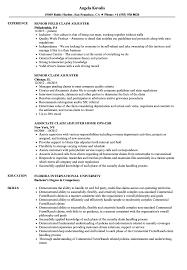 Claim Adjuster Resume Samples Velvet Jobs