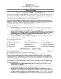 Business Resume Format Gorgeous Executive Sales Resume National Sales Executive Resume S Sales