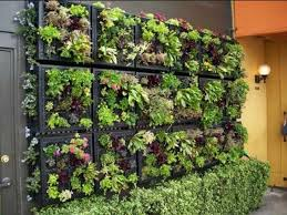 Small Picture Vertical Wall Garden Ideas Garden Ideas And Garden Designl best