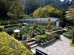 Small Picture Organic garden pictures