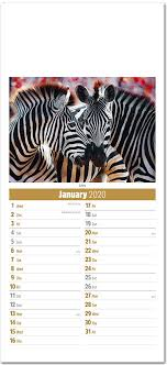 School Calendar Template 2020 17 Slimline World Wildlife Compact Calendar 2020 Rose Calendars