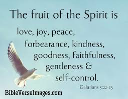 Quote From The Bible About Love Stunning Bible Quotes Bible Verse Images
