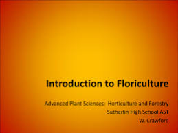 history of floral design powerpoint history of floral design assignment