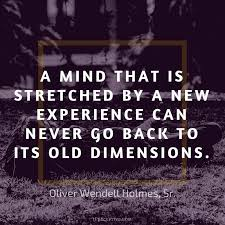 Experience Quotes Classy 48 Quotes On Experience And Why Its Irreplaceable IPerceptive
